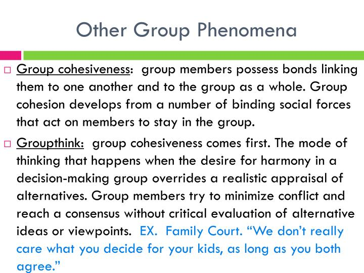 Other Group Phenomena