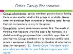 other group phenomena1