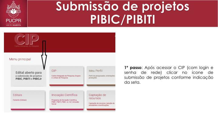 submiss o de projetos pibic pibiti