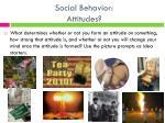 social behavior attitudes