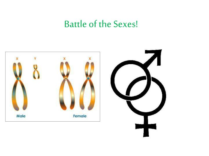 Battle of the Sexes!