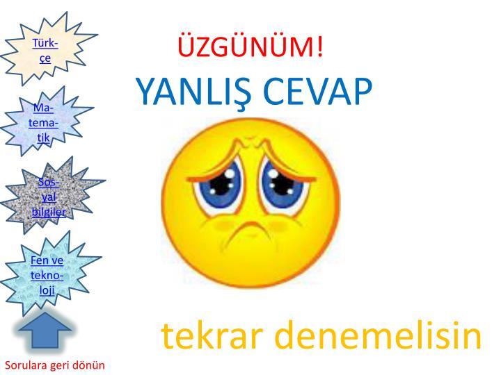 Türk-