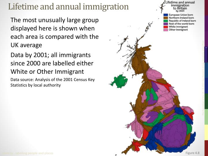 Lifetime and annual immigration