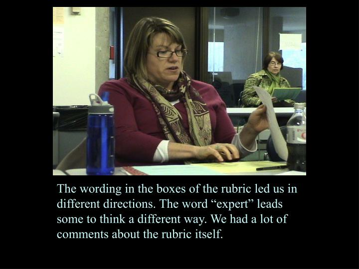 """The wording in the boxes of the rubric led us in different directions. The word """"expert"""" leads some to think a different way. We had a lot of comments about the rubric itself."""