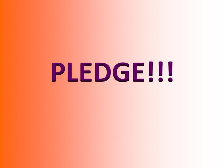 PLEDGE!!!