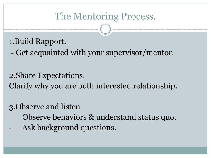 The Mentoring Process.