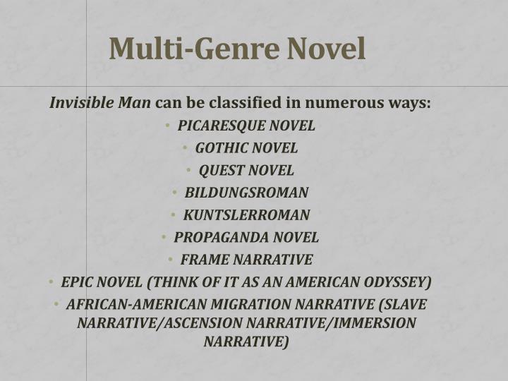 Multi-Genre Novel