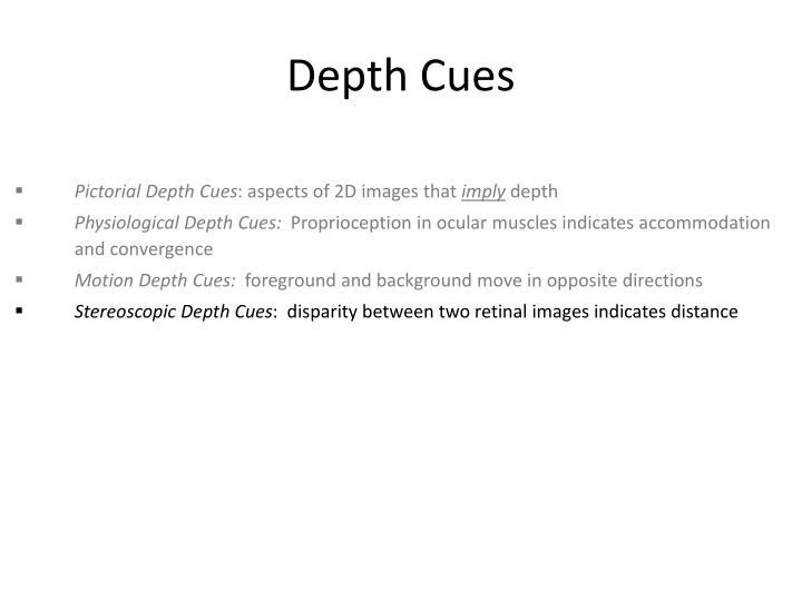 Depth Cues