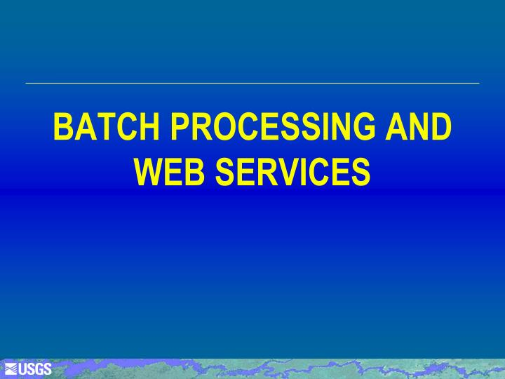 Batch PROCESSING AND web services