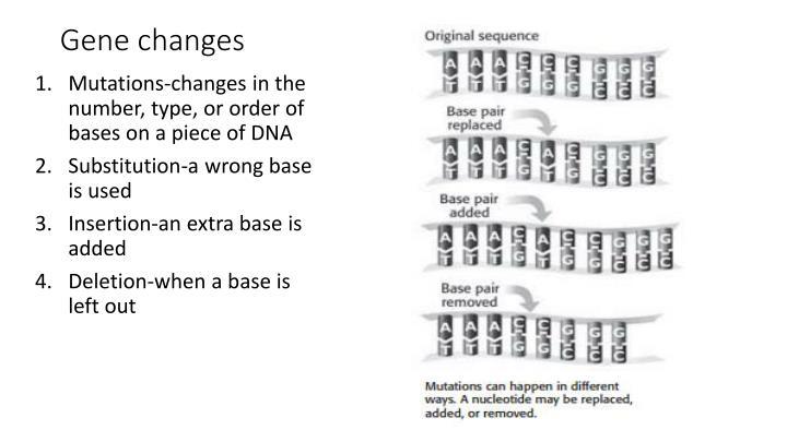 Gene changes