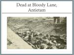 dead at bloody lane antietam