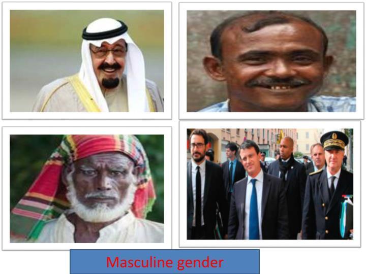 Masculine gender