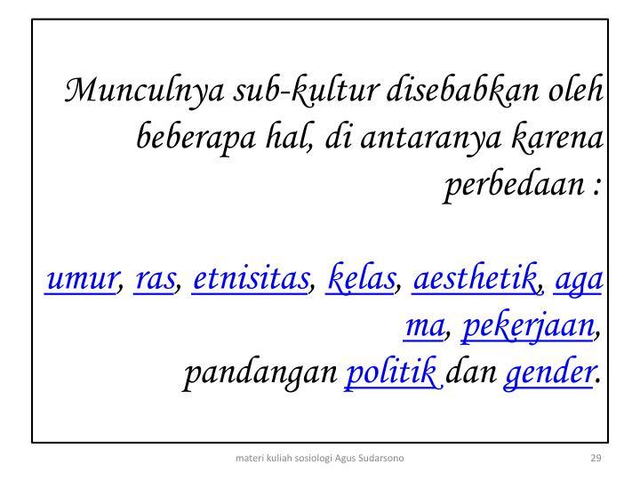 Munculnya sub-kultur disebabkan oleh beberapa hal, di antaranya karena perbedaan