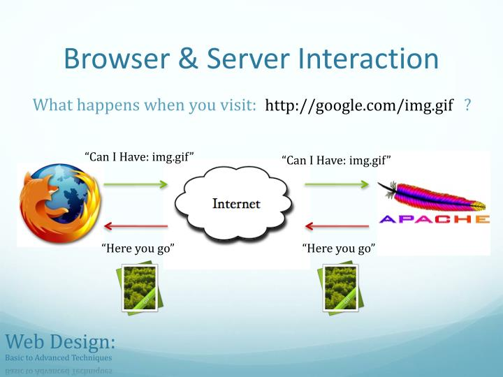 Browser & Server Interaction