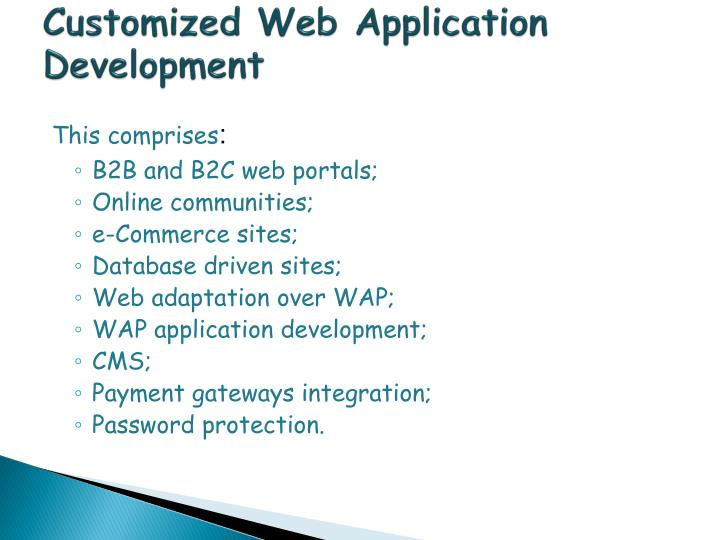 Customized Web Application Development