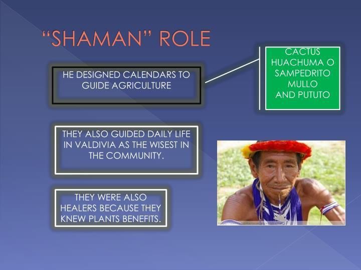 """""""SHAMAN"""" ROLE"""