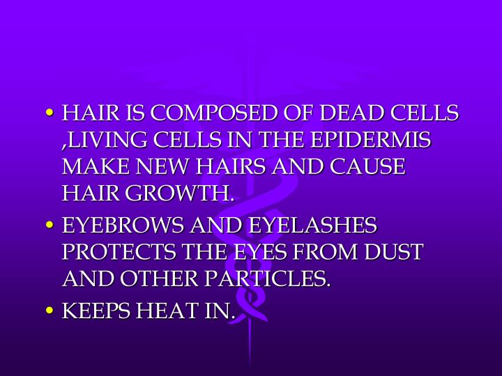 HAIR IS COMPOSED OF DEAD CELLS ,LIVING CELLS IN THE EPIDERMIS MAKE NEW HAIRS AND CAUSE HAIR GROWTH.