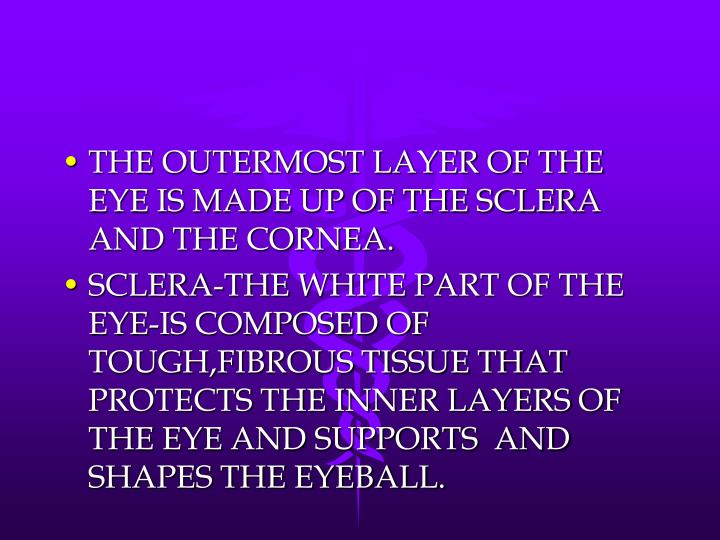 THE OUTERMOST LAYER OF THE EYE IS MADE UP OF THE SCLERA AND THE CORNEA.