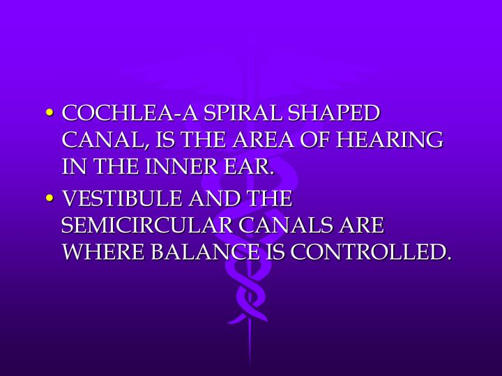 COCHLEA-A SPIRAL SHAPED CANAL, IS THE AREA OF HEARING IN THE INNER EAR.