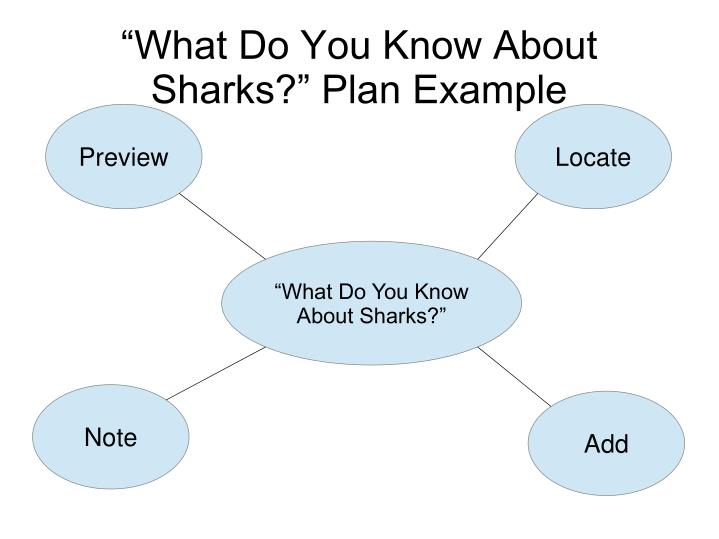 """What Do You Know About Sharks?"" Plan Example"