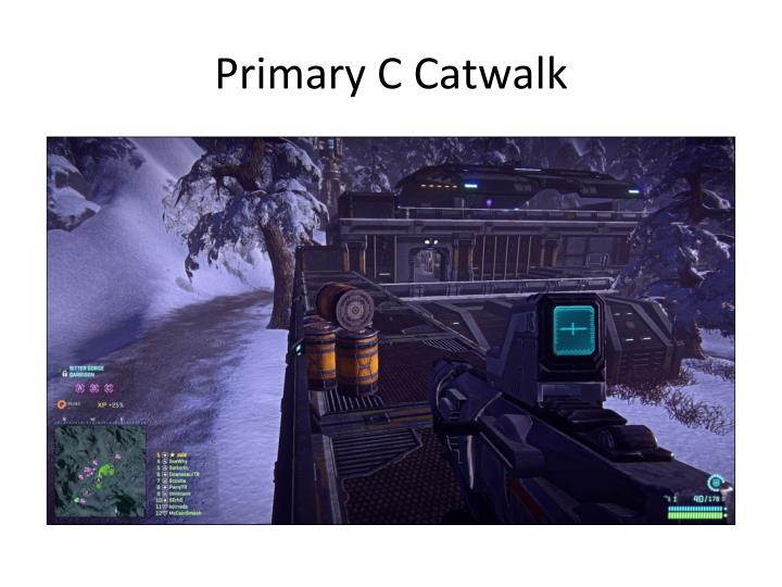 Primary C Catwalk