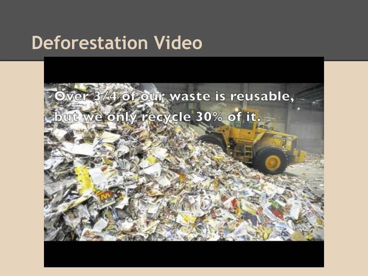 Deforestation Video