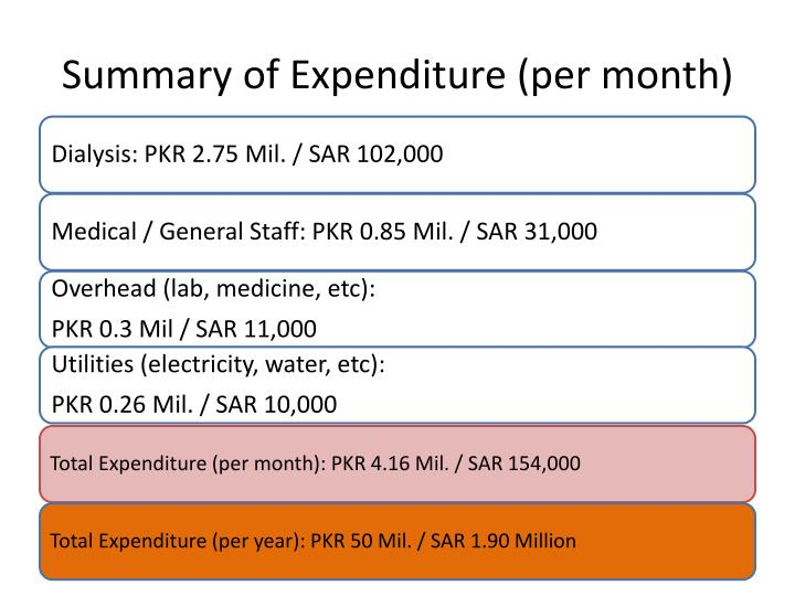 Summary of Expenditure (per month)