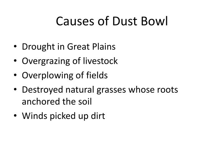 Causes of Dust Bowl