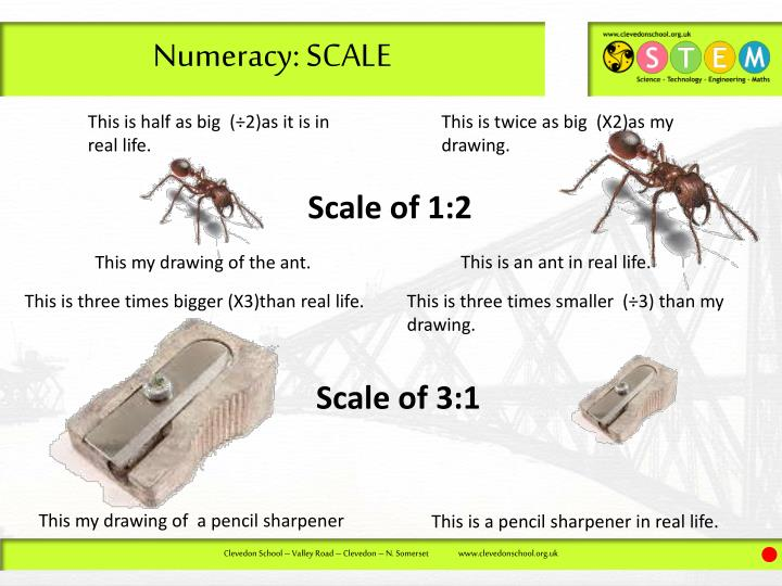 Numeracy: SCALE