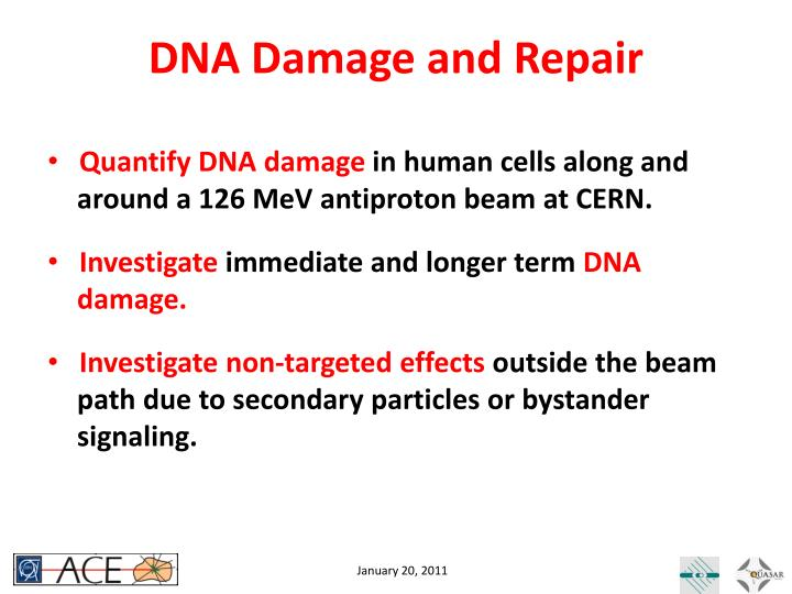 DNA Damage and