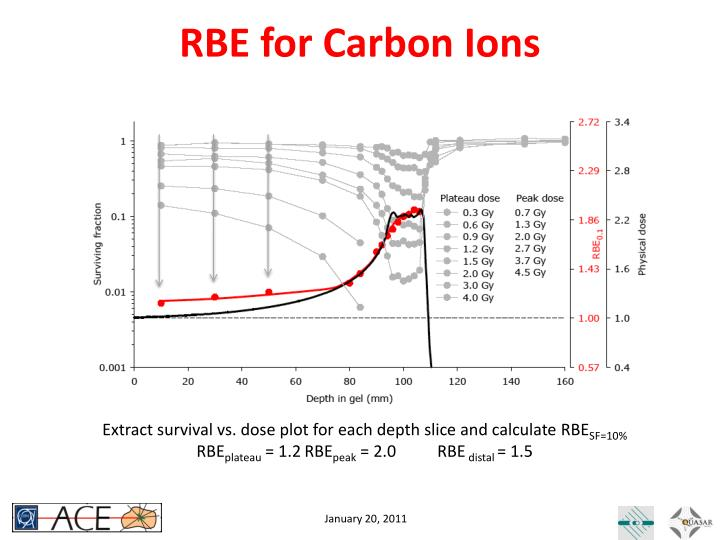 RBE for Carbon Ions