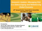 economic update managing risk in a deleveraging and rebalancing global economy