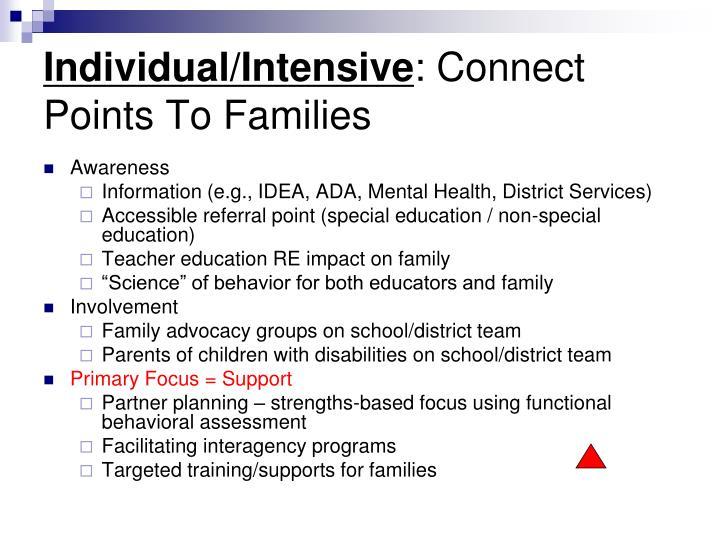 Individual/Intensive