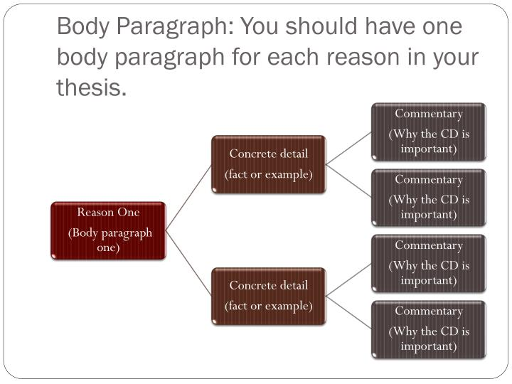 Body Paragraph: You should have one body paragraph for each reason in your thesis.