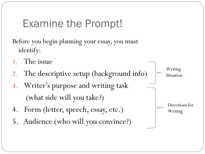 Examine the prompt