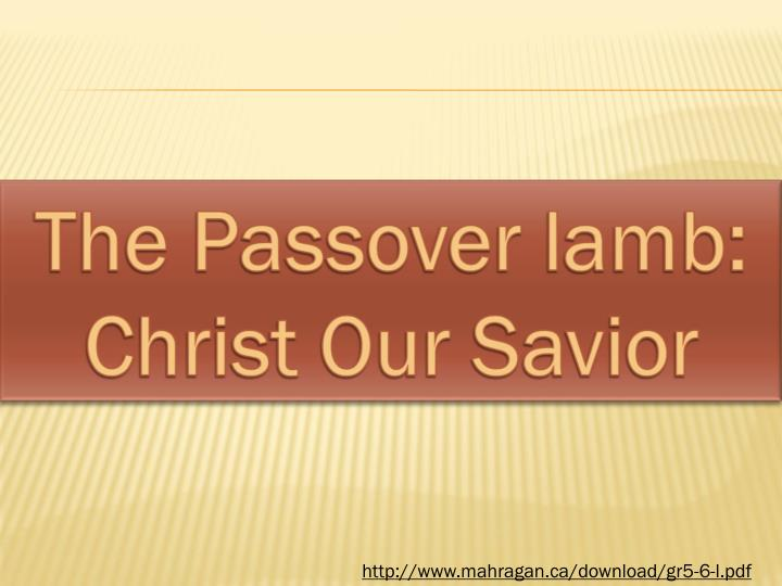 The Passover lamb: