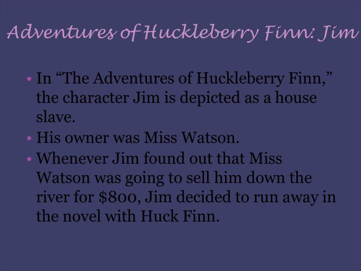 Adventures of Huckleberry Finn: Jim