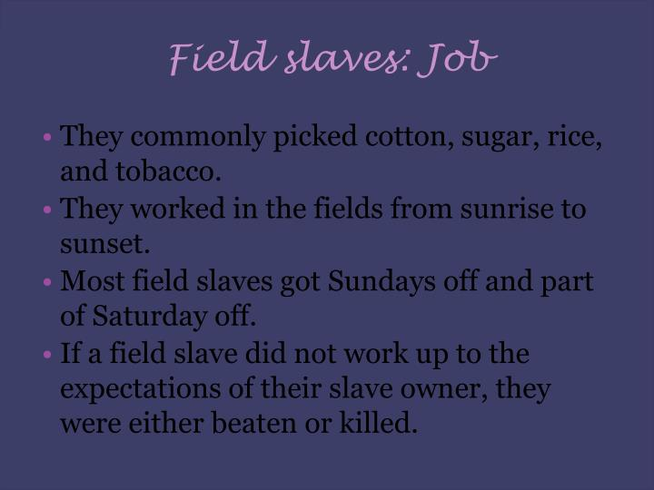 Field slaves: Job