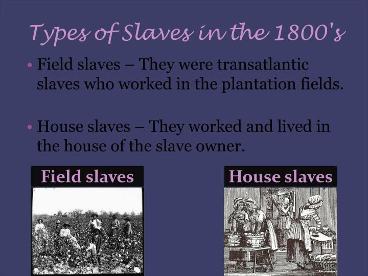 Types of Slaves in the 1800's
