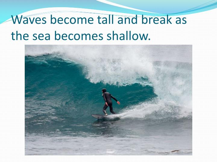 Waves become tall and break as the sea becomes shallow.