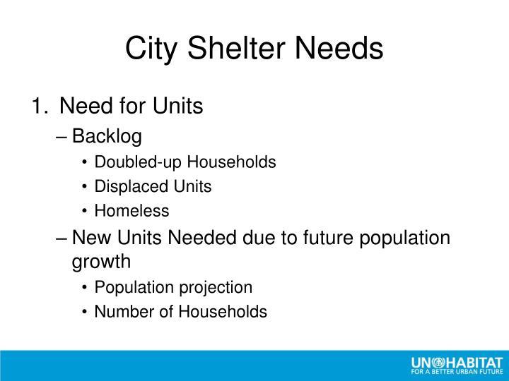 City Shelter Needs