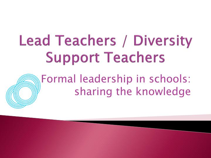 Lead Teachers / Diversity Support Teachers