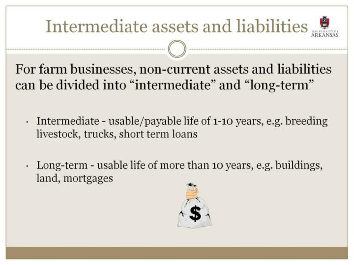 Intermediate assets and liabilities