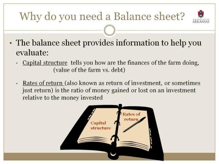 Why do you need a Balance sheet?