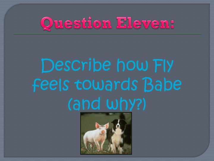 Question Eleven: