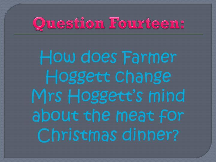 Question Fourteen: