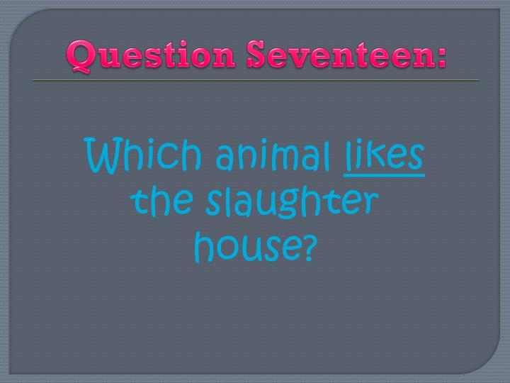 Question Seventeen: