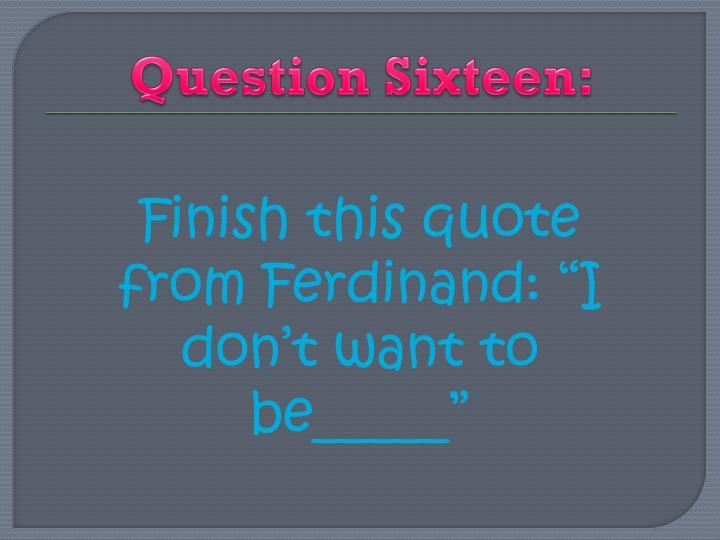 Question Sixteen: