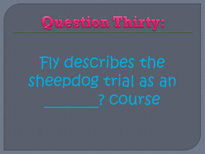 Question Thirty:
