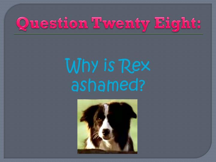 Question Twenty Eight: